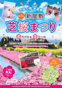 芝桜ポスター21_修正-1